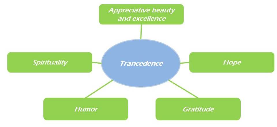 Virtue Transcedence